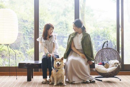 ペット&スパホテル伊豆ワン