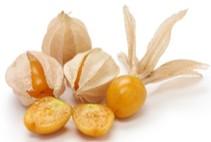 南米が原産の食用ホオズキ。別名インカベリー