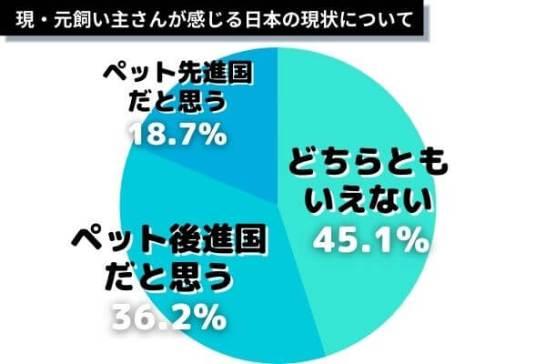 日本は犬に優しい国?殺処分をどう思う?犬を取り巻く環境や問題を徹底調査!【犬の飼い主1000人にアンケート】