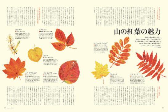 秋山JOY2021 - インプレス