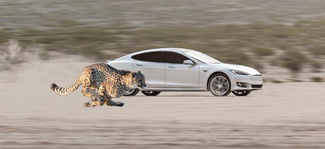 Tesla научат быстрому старту