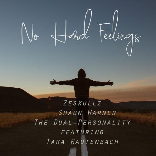 ZeSKULLZ  – No Hard Feelings