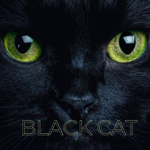Steel Standing TX – Black Cat