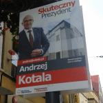 kotala_na_wolce