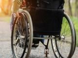 Czy 50% lokali w Chorzowie jest dostosowanych do potrzeb niepełnosprawnych?