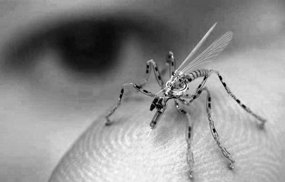 Insect Spy Drones in Production