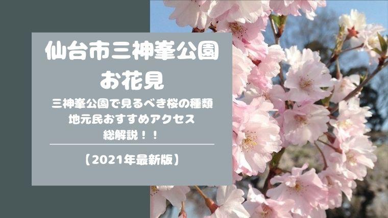 仙台市三神峯公園でお花見☆桜の種類や駐車場情報まで徹底解説!