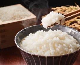 新米の季節、今年は当たり年といわれる、ブランド米ニューカマーを食べ比べてみよう!