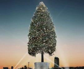 「世界一のクリスマスツリー」の世界ギネス記録達成プロジェクトに参加したい!