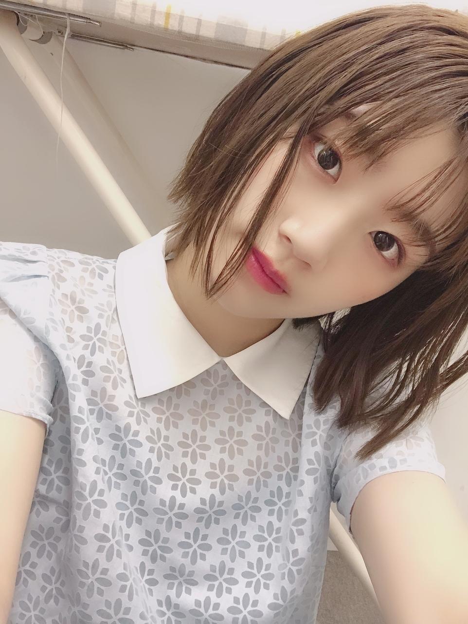 日向坂46メンバーブログまとめ2019年6月8日