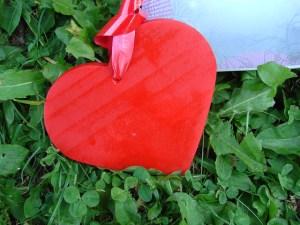 facteurs de risques cardiovasculaire