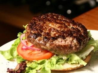 """המבורגר מתאי גזע, צילום: יח""""צ"""