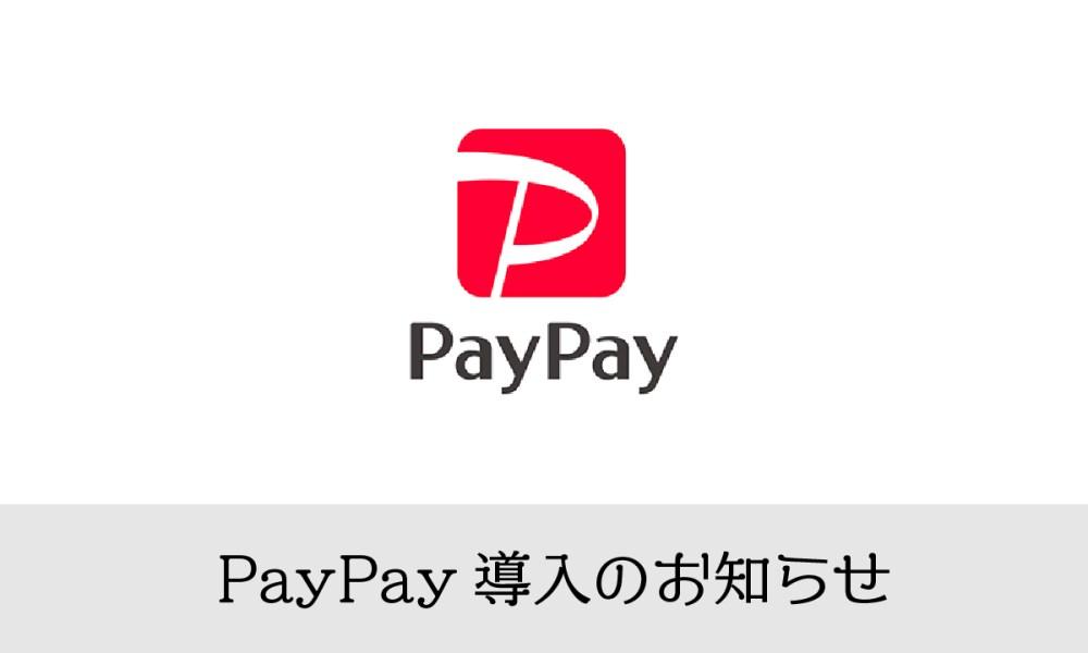 PayPay(ペイペイ)導入のお知らせ