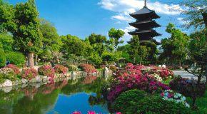Kyoto y sus monumentos: centro de la cultura japonesa