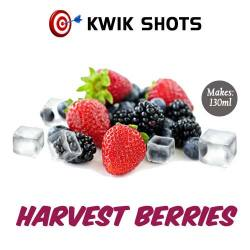Kwik Shots - Harvest-Berries- One shot Flavour Concentrates   South Africa