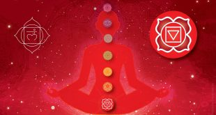 Root Chakra is Opened