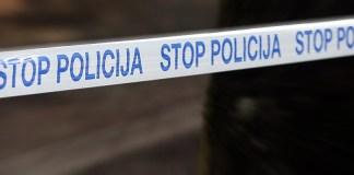Policija, policiste,policija vnukinja