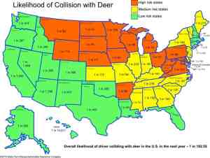 Michigan Deer Collisions
