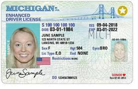 Michigan REAL ID Driver License