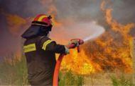 Μοσχάτο : Όλος ο Μηχανισμός Πολιτικής Προστασίας της Περιφέρειας Αττικής στη μάχη της φωτιάς