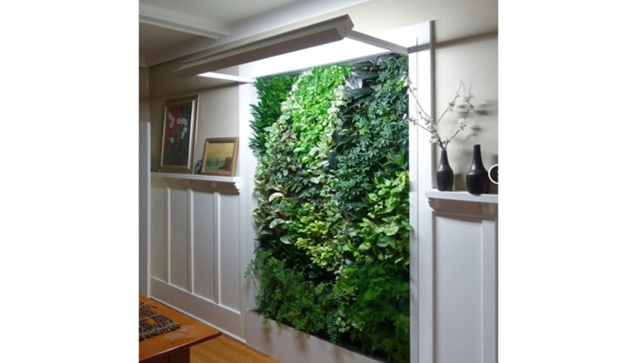 a spotlighted living plant wall on a white wall
