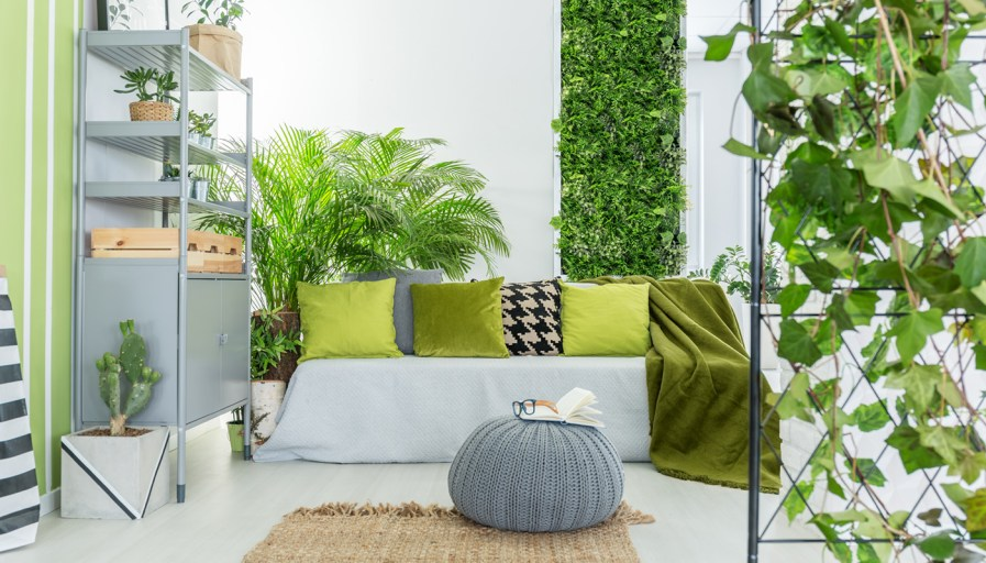 a room full of plants including a living plant wall