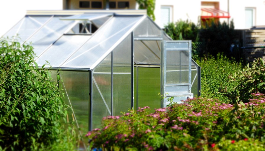 an outdoor greenhouse