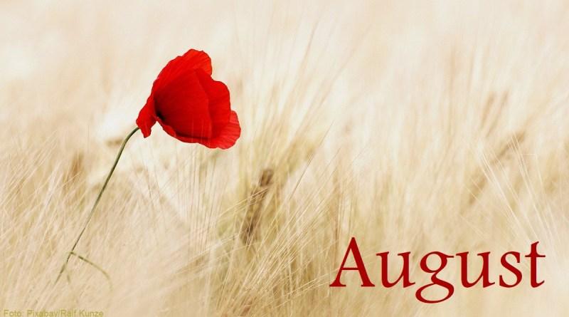 August - Symbolbild