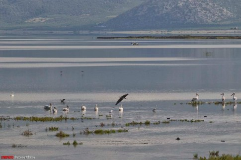 lake-karla-05-20120528