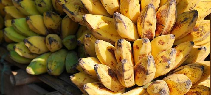 bananas-708
