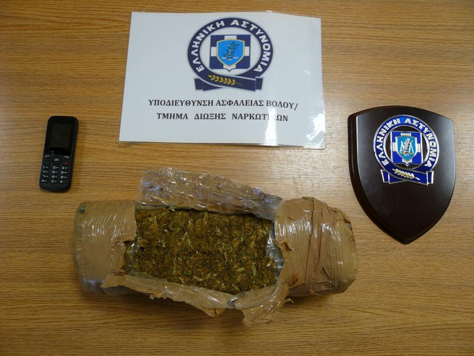 Συνελήφθη για διακίνηση ναρκωτικών 27χρονος Αλβανός – Είχε θαμμένο στο Πήλιο ένα κιλό κάνναβης