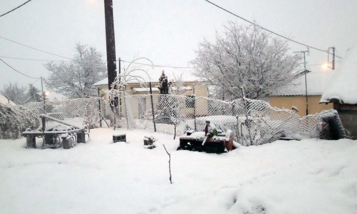 Χιονίζει και πάλι στα Φάρσαλα (photos)