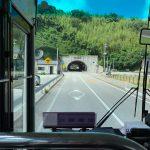 隠岐島【国賀めぐり定期観光バス】絶景を簡単に周遊!おすすめ
