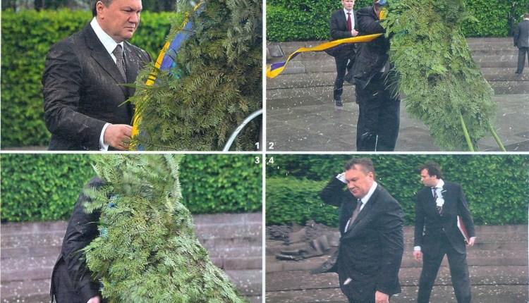 tree  fell on PM-5479