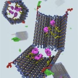 nanorobot-270×270-23032