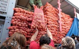 patates-24642