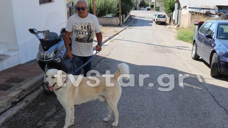 Πρόστιμο 500 ευρώ σε κάτοικο επειδή ο σκύλος του... γαβγίζει!