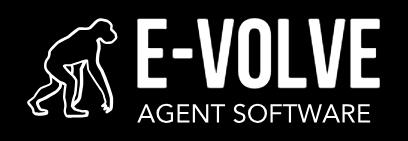 E-Volve Agent