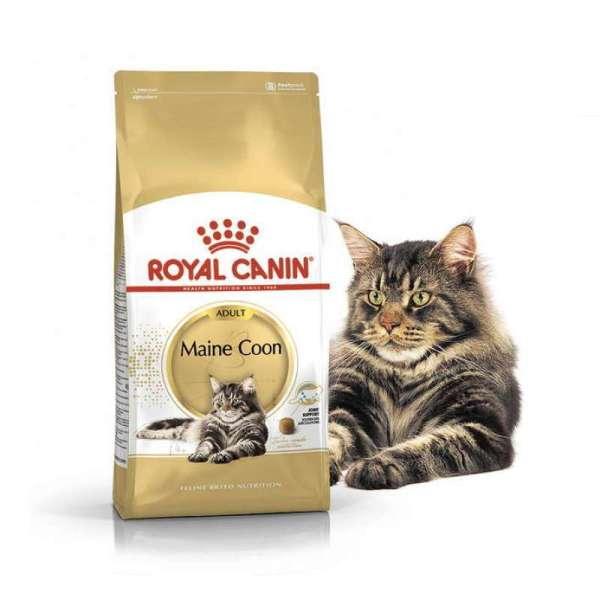 Royal Canin (Роял Канин) Maine Coon Adult - Сухой корм с ...
