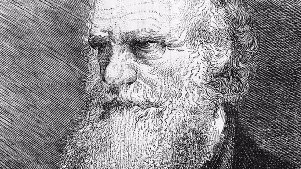 El naturalista británico Charles Darwin, padre de la Teoría de la Evolución.