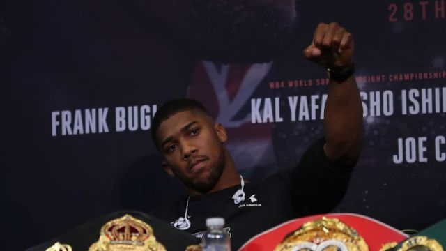 'AJ' hopes to remain on course for unification clashes next year