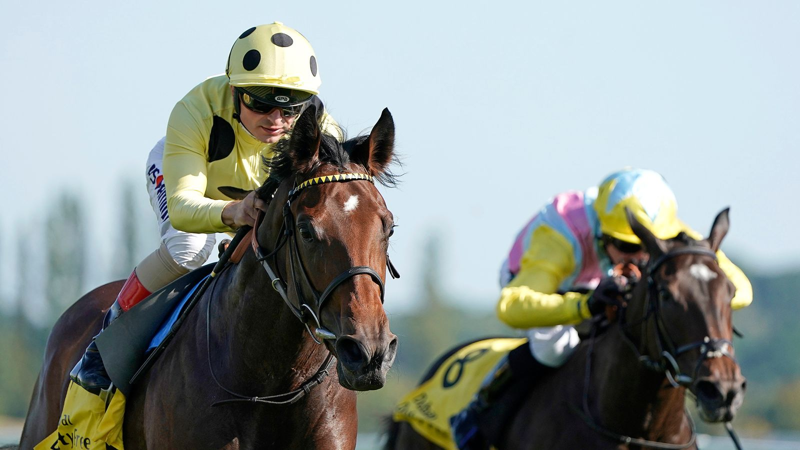 Photo of Pierre Lapin up for the Cup Friday Royal Ascot entries