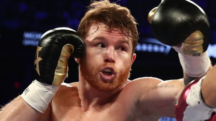 Canelo plans to fight in 2020