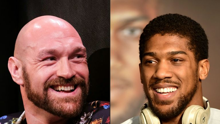 Fury and Joshua pic