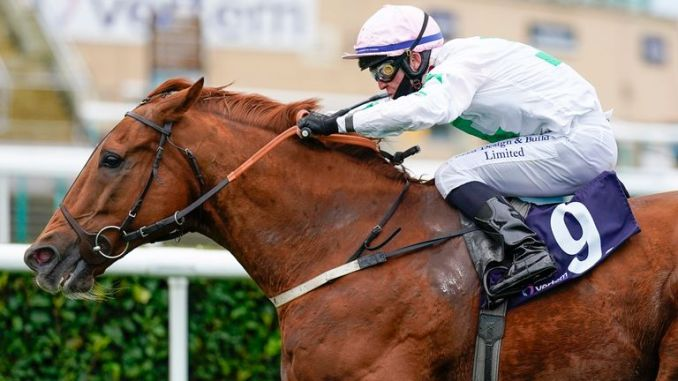 Ray Dawson riding Venturous to win at Doncaster last October