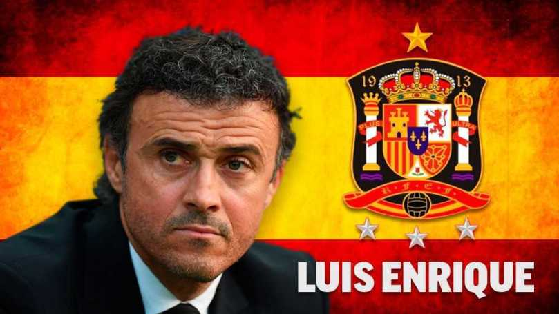 Spanish FA: Luis Enrique is the new coach of Spain   MARCA in English