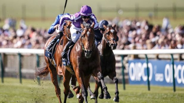 Saxon Warrior: Tops field of 12 for the Investec Derby