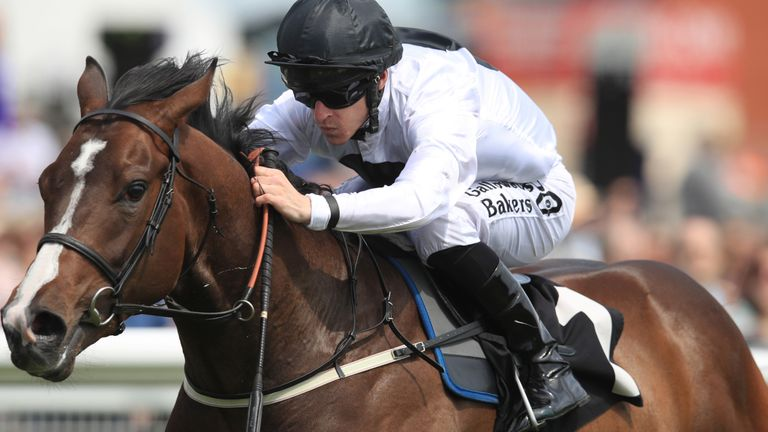 Advertise - heads to Curragh for Phoenix Stakes