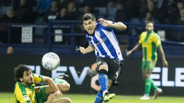 Fernando Forestieri has suffered another injury blow