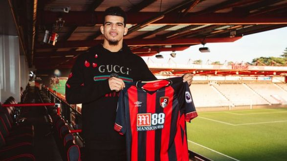 Palace target Dominic Solanke left Liverpool for Bournemouth on a long-term deal